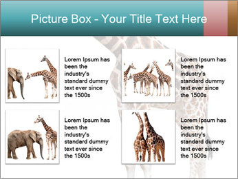 0000082964 PowerPoint Template - Slide 14