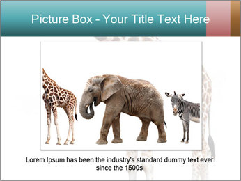 0000082964 PowerPoint Template - Slide 15