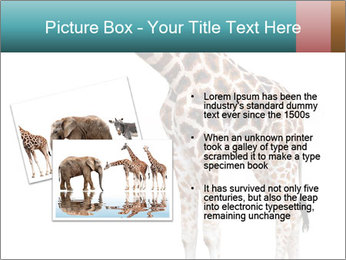 0000082964 PowerPoint Templates - Slide 20