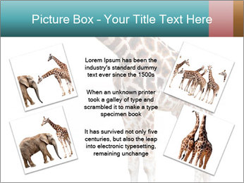 0000082964 PowerPoint Template - Slide 24