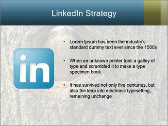 0000082976 PowerPoint Templates - Slide 12