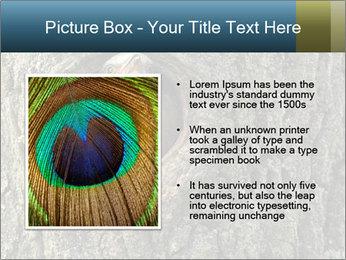 0000082976 PowerPoint Templates - Slide 13
