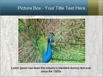 0000082976 PowerPoint Templates - Slide 15