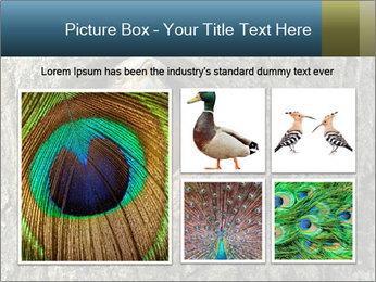 0000082976 PowerPoint Templates - Slide 19