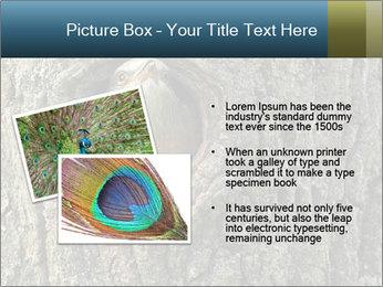 0000082976 PowerPoint Templates - Slide 20