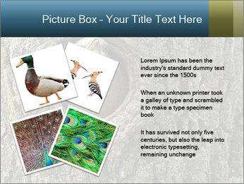 0000082976 PowerPoint Templates - Slide 23