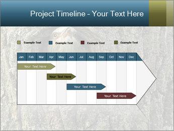 0000082976 PowerPoint Templates - Slide 25