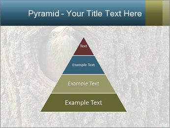 0000082976 PowerPoint Templates - Slide 30