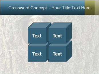 0000082976 PowerPoint Templates - Slide 39