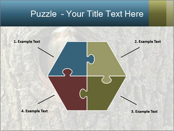 0000082976 PowerPoint Templates - Slide 40