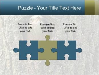 0000082976 PowerPoint Templates - Slide 42