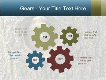 0000082976 PowerPoint Templates - Slide 47