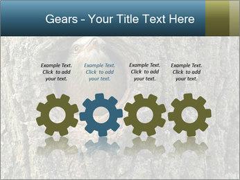 0000082976 PowerPoint Templates - Slide 48