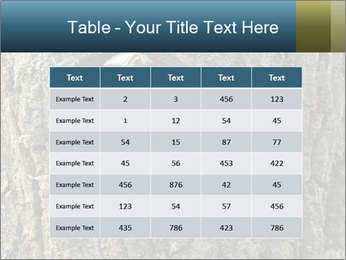 0000082976 PowerPoint Templates - Slide 55