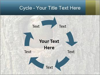 0000082976 PowerPoint Templates - Slide 62