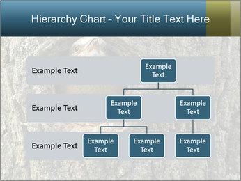 0000082976 PowerPoint Templates - Slide 67