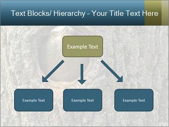 0000082976 PowerPoint Templates - Slide 69