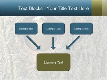 0000082976 PowerPoint Templates - Slide 70