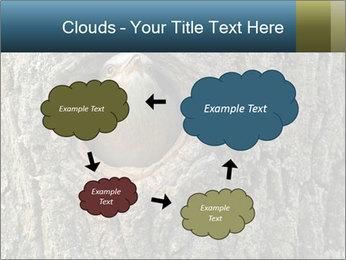 0000082976 PowerPoint Templates - Slide 72