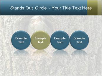 0000082976 PowerPoint Templates - Slide 76