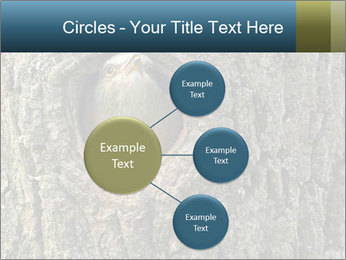 0000082976 PowerPoint Templates - Slide 79
