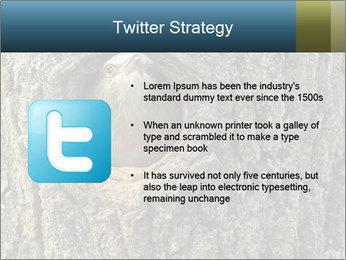 0000082976 PowerPoint Templates - Slide 9