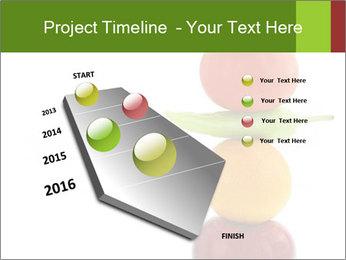 0000082979 PowerPoint Template - Slide 26