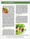 0000082984 Word Templates - Page 3