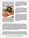 0000082984 Word Templates - Page 4