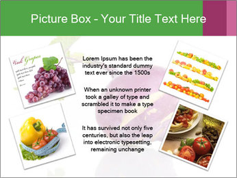 0000082986 PowerPoint Template - Slide 24
