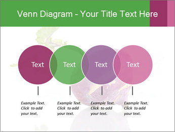 0000082986 PowerPoint Template - Slide 32