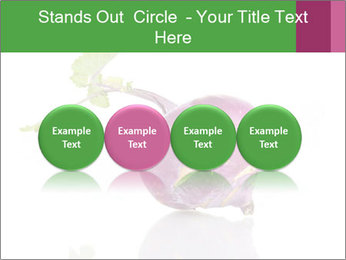 0000082986 PowerPoint Template - Slide 76