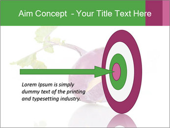 0000082986 PowerPoint Template - Slide 83
