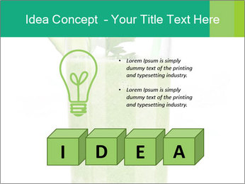 0000082996 PowerPoint Templates - Slide 80