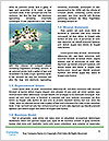 0000082997 Word Template - Page 4
