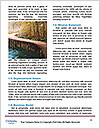 0000083001 Word Template - Page 4