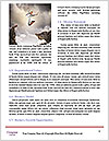 0000083003 Word Templates - Page 4
