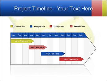 0000083004 PowerPoint Templates - Slide 25