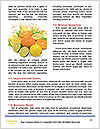 0000083004 Word Template - Page 4