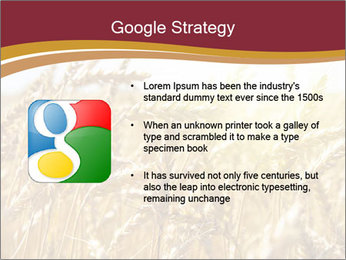 0000083010 PowerPoint Template - Slide 10