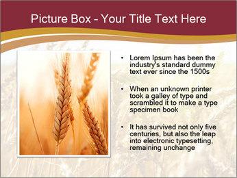 0000083010 PowerPoint Templates - Slide 13