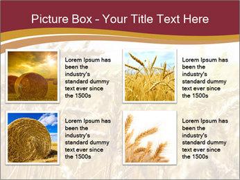 0000083010 PowerPoint Templates - Slide 14