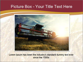 0000083010 PowerPoint Template - Slide 15