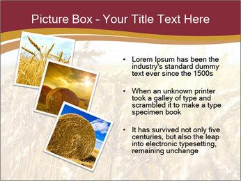 0000083010 PowerPoint Templates - Slide 17
