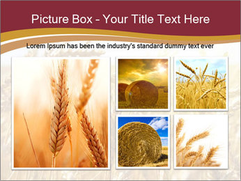 0000083010 PowerPoint Template - Slide 19