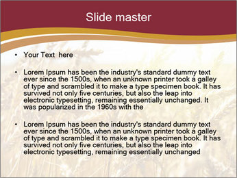 0000083010 PowerPoint Template - Slide 2