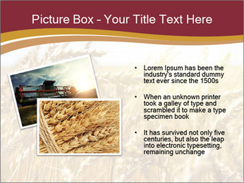 0000083010 PowerPoint Template - Slide 20