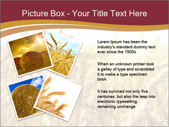 0000083010 PowerPoint Template - Slide 23