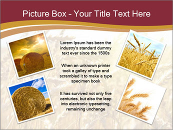 0000083010 PowerPoint Templates - Slide 24