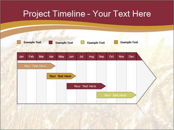 0000083010 PowerPoint Templates - Slide 25